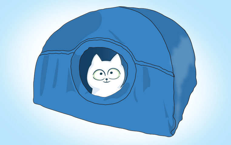 How To Make A Cat Tent Out Of A T-Shirt – Hacks For Cats