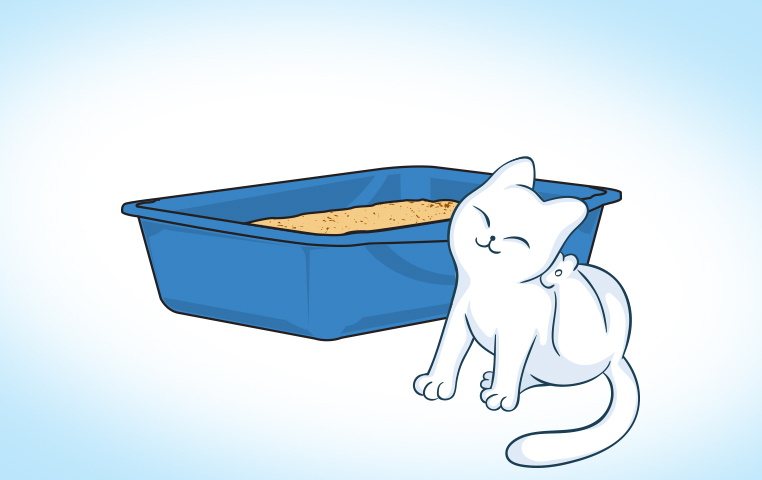 How To Control Cat Litter Tracking And Tering