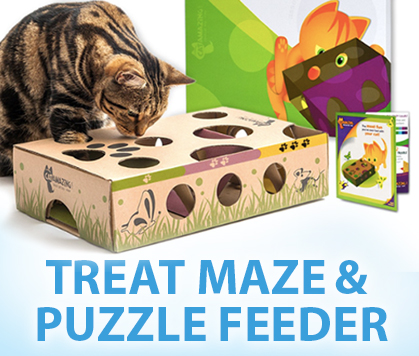 Make A Cat Puzzle Feeder Hacks For Cats